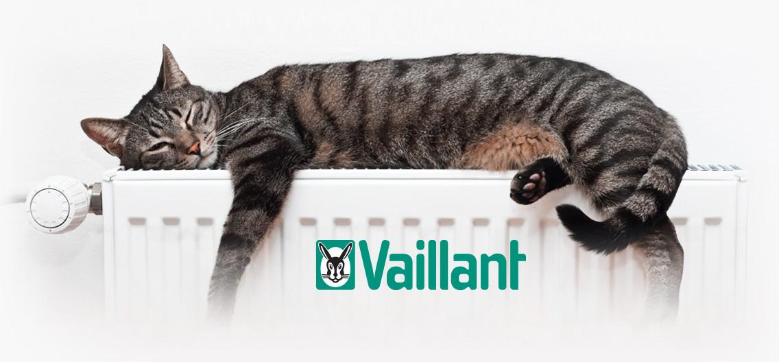 contratos de mantenimiento de calderas Vaillant en Rivas Vaciamadrid